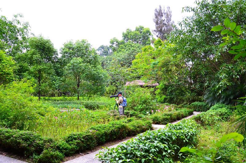 Image Result For Beauty Garden