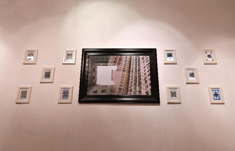 「第六屆藝遊鄰里計劃:石頭都會笑」展覽由今日(十月七日)至十一月二十七日在香港浸會大學視覺藝術院啟德校園畫廊舉行。圖示藝術家張展恒作品《坪方1-間》。