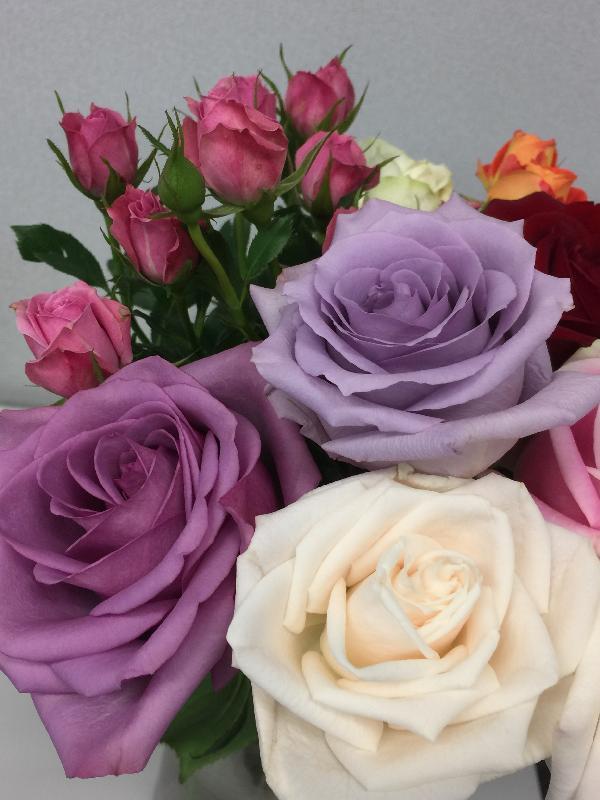 今年香港花卉展覽將於三月十日至十九日在維多利亞公園舉行,以「愛‧賞花」為主題,主題花是玫瑰。