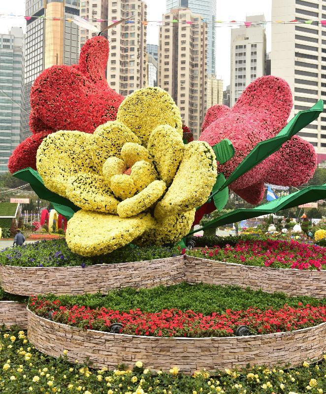 二零一七年香港花卉展覽明日(三月十日)至三月十九日在維多利亞公園舉行。康樂及文化事務署的大型展品「瑰麗‧情真」以四朵玫瑰花造型雕塑為中心,從不同角度展現玫瑰浪漫、高貴及美麗的面貌。