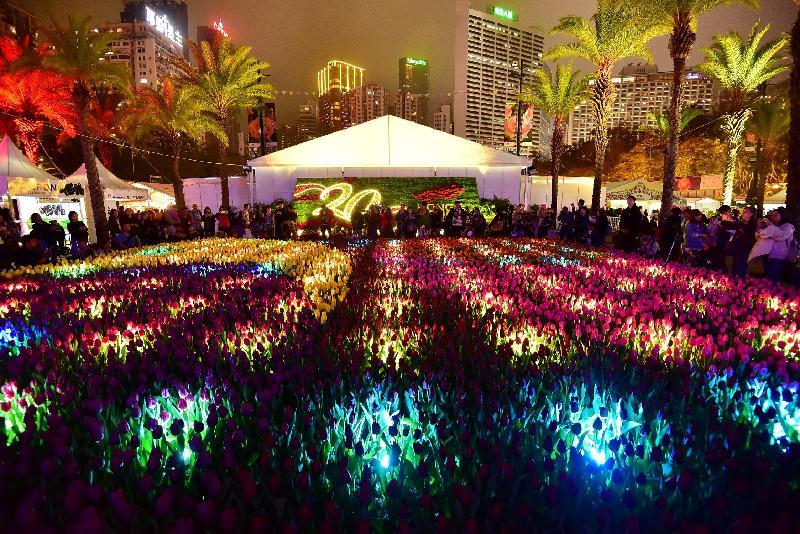 香港花卉展覽於星期日(三月十九日)結束,今年的亮點之一是首次在花藝擺設和園林造景中加入柔和光影元素,讓市民欣賞場內萬花在日與夜的不同美態。