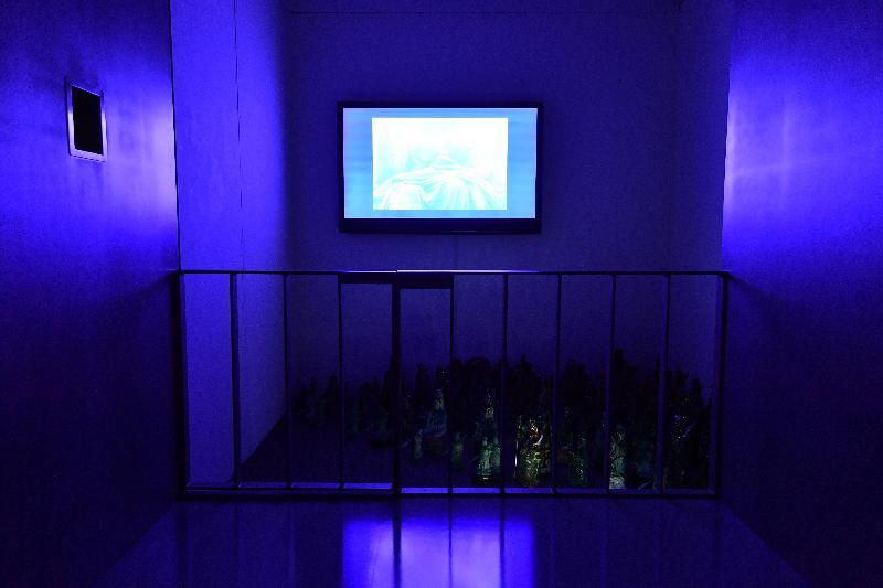 由油街實現與香港視覺藝術中心籌劃的「第六屆藝遊鄰里計劃:遊園誌」展覽今日(五月二十六日)在香港視覺藝術中心展覽廳展開。圖示「遊園誌」項目團隊的作品「強制現實觀察亭」。