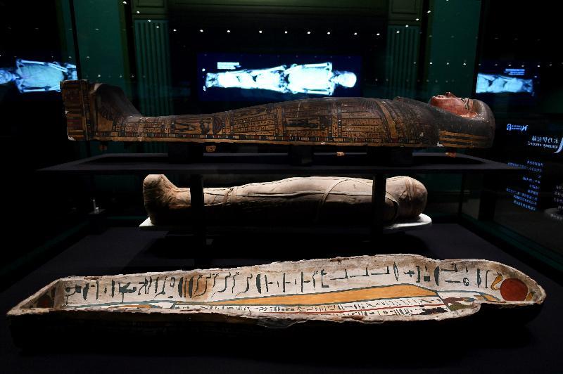香港科學館本年度重點展覽「香港賽馬會呈獻系列:永生傳說--透視古埃及文明」明日(六月二日)起舉行。圖示展品「內斯達華狄特的木乃伊和內棺木」(約公元前700至680年,大英博物館藏品),後方的顯示屏展示木乃伊的電腦斷層掃描影像。