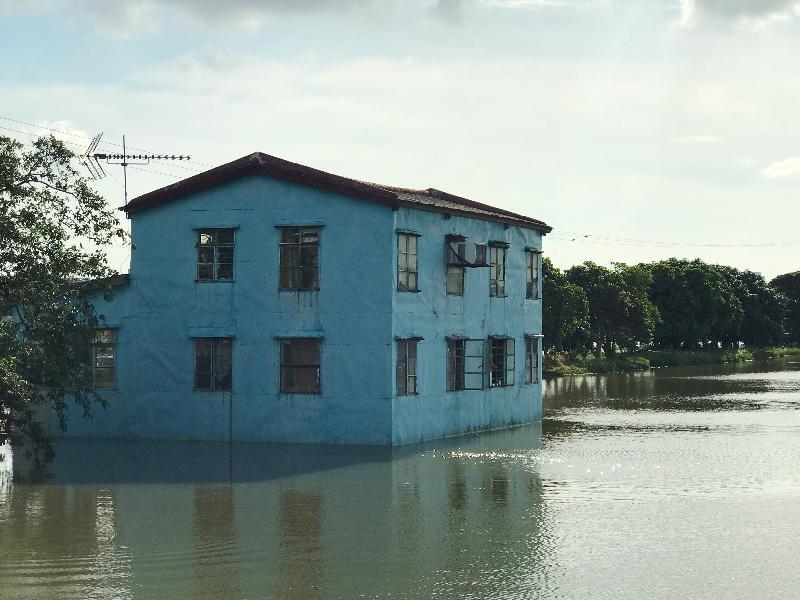 漁 農 自 然 護 理 署 署 長 梁 肇 輝 博 士 今 日 ( 八 月 二 十 四 日 ) 下 午 視 察 受 颱 風 天 鴿 影 響 的 農 田 及 魚 塘 。 圖 示 元 朗 甩 洲 一 個 受 颱 風 及 大 潮 影 響 的 魚 塘 。