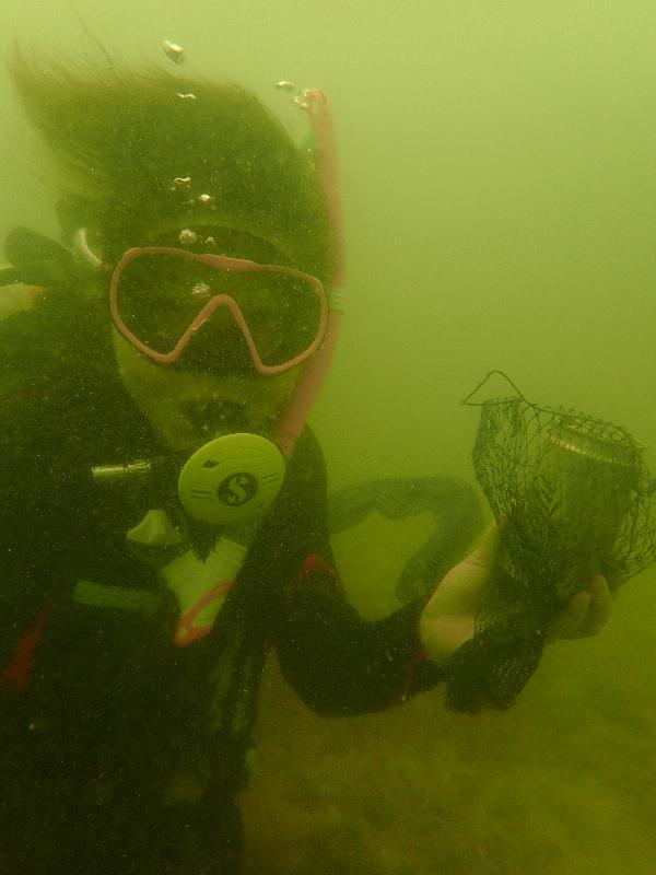 漁 農 自 然 護 理 署 與 香 港 潛 水 總 會 再 度 合 作 , 今 日 ( 九 月 十 六 日 ) 在 西 貢 橋 咀 舉 辦 海 岸 清 潔 日 。 圖 示 義 務 潛 水 員 撿 拾 海 床 上 的 垃 圾 。