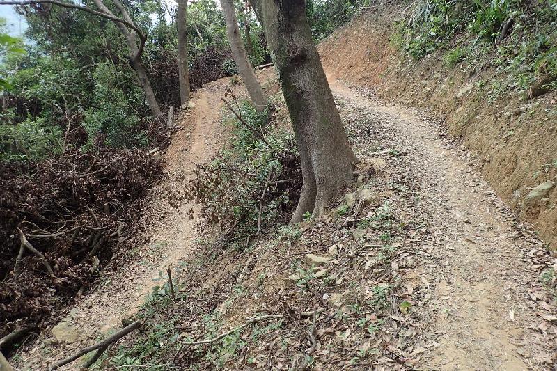 大欖郊野公園兩條越野單車徑新段昨日(九月二十三日)正式開放。位於俗稱「黃麂坳」的越野單車徑新段設有如手臂彎等具挑戰性的設計,使用者須具備豐富經驗及進階技術。