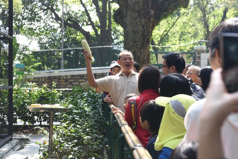 香港動植物公園十月一日及二日一連兩日舉辦「動物護理聚談」活動,市民可以近距離觀賞不同的靈長類動物和雀鳥。圖示園內資深動物飼養員與遊人分享日常照顧動物的心得。