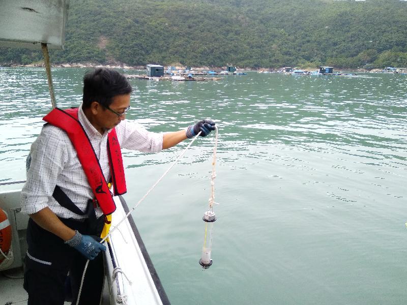 漁 農 自 然 護 理 署 十 月 三 十 一 日 至 今 日 ( 十 一 月 六 日 ) 舉 行 演 習 , 以 檢 視 部 門 在 本 港 出 現 紅 潮 或 有 害 藻 華 而 引 致 魚 類 死 亡 時 的 應 變 能 力 。 圖 示 該 署 人 員 模 擬 從 魚 類 養 殖 區 抽 取 水 樣 本 , 以 評 估 有 害 藻 華 擴 散 情 況 。