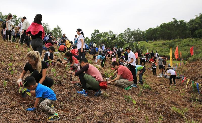 The Country Parks Hiking and Planting Day 2018 will be jointly held by the Agriculture, Fisheries and Conservation Department and Friends of the Country Parks on March 18, April 8 and April 22, aiming to enhance public awareness of nature conservation and tree preservation.