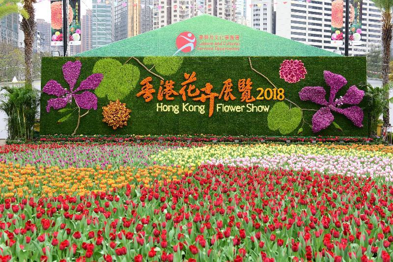 二零一八年香港花卉展覽明日(三月十六日)至三月二十五日,在維多利亞公園舉行。今年花展的主題花是「大麗花」,以「心花放」為主題。圖示立體花牆與前端美麗的鬱金香花海。