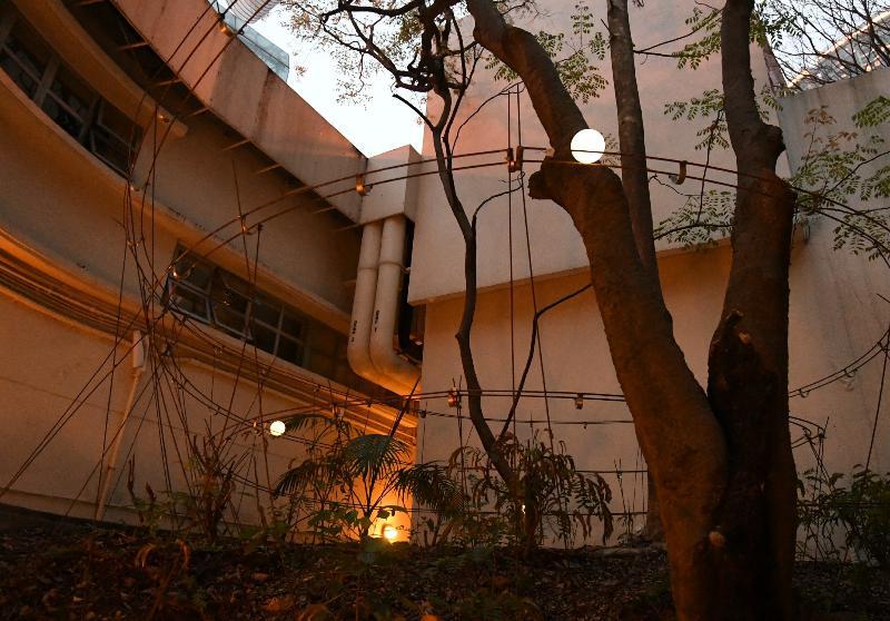 藝術推廣辦事處轄下香港視覺藝術中心明日(三月十八日)展開全新活動「秘密花園」。圖示「秘密花園」戶外藝術裝置。