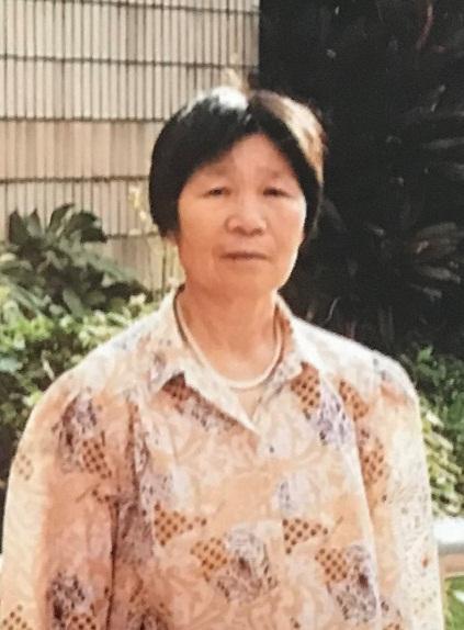 六十四歲女子陳秀華身高約一點五四米,體重約四十五公斤,瘦身材,圓面型,黃皮膚及蓄短直黑髮。她最後露面時身穿黑色長袖上衣、黑色長褲、黑色鞋及攜有一個淺色環保袋。