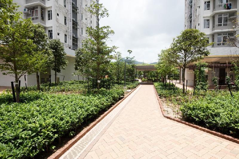 洪福邨的綠化率超過百分之三十,所種植的樹木和植物以本地品種為主。