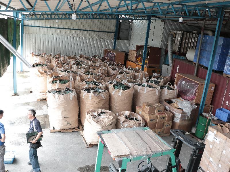 环保署人员去年九月在北区恐龙坑一个回收场检获废印刷电路板。