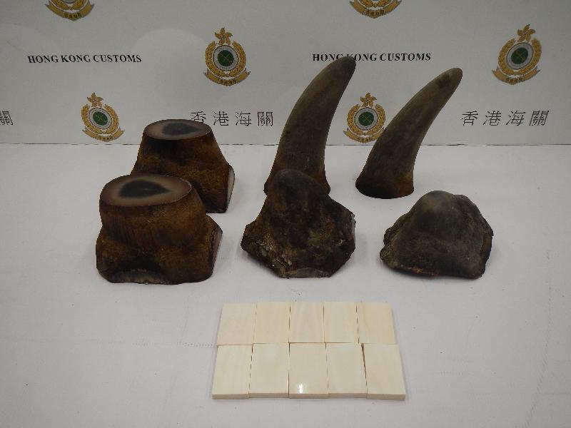 香港海關今日(六月六日)在香港國際機場檢獲約五點九公斤懷疑犀牛角及約四百一十克懷疑象牙製品,估計市值約一百二十萬元。