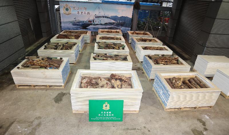 香港海關昨日(六月五日)在葵涌海關大樓驗貨場一個貨櫃內檢獲約五千七百公斤懷疑紫檀木材,估計市值約六百九十萬元。