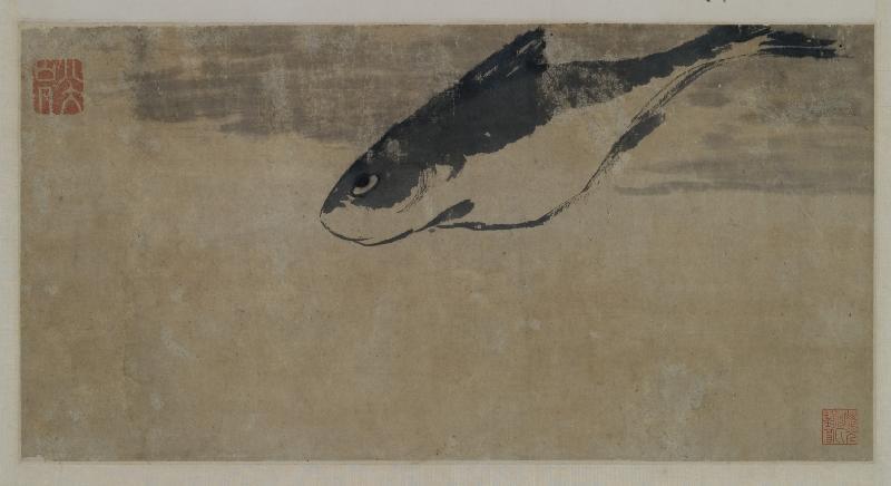 香港藝術館獲贈逾三百五十件至樂樓藏中國書畫,捐贈儀式今日(七月十九日)舉行。圖示八大山人(一六二六至一七○五)的《魚樂圖》(局部),此畫寥寥數筆,即刻畫出游魚傲然不群的眼神,以聊寄忘國之痛。