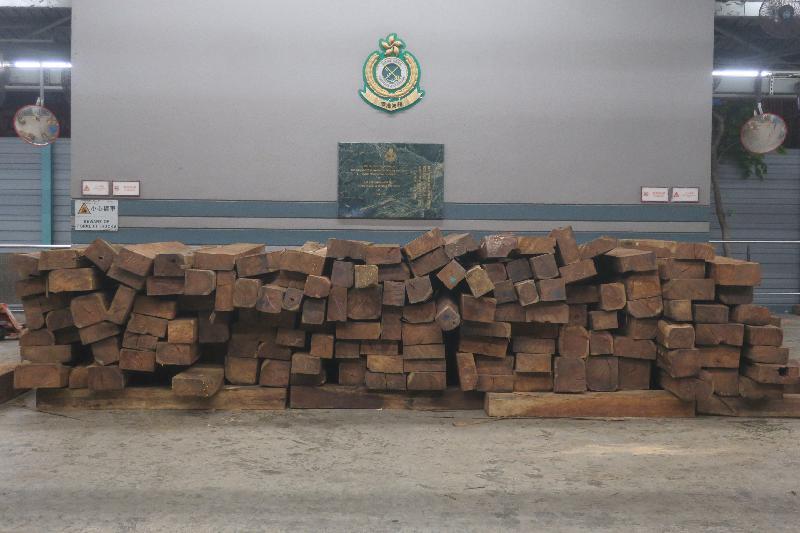香港海關與漁農自然護理署於六月十八日至八月二十五日期間,進行代號「守衞者」的聯合執法行動,在機場、港口、陸路及鐵路管制站加強打擊走私瀕危物種的活動。圖示部分檢獲的懷疑瀕危物種木材。