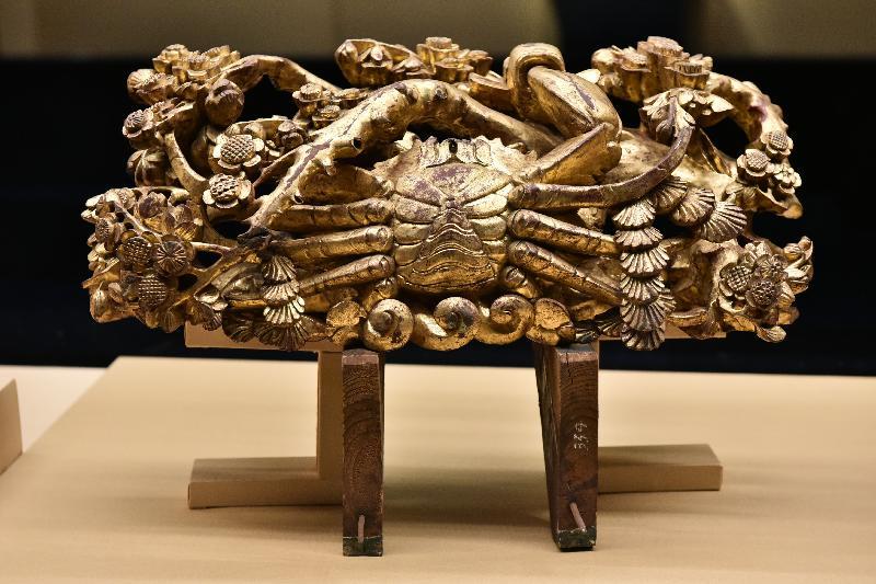 「金漆輝映:潮州木雕」展覽今日(十一月七日)於香港歷史博物館開幕。圖示展覽展出的金漆通雕梅花螃蟹樑托。