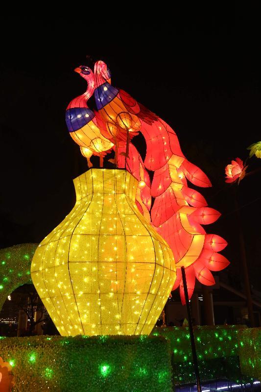 康樂及文化事務署現於香港文化中心露天廣場舉行春節專題綵燈展「雀屏春瑞耀香江」,與市民共迎新歲,綵燈將展出至二月二十四日。