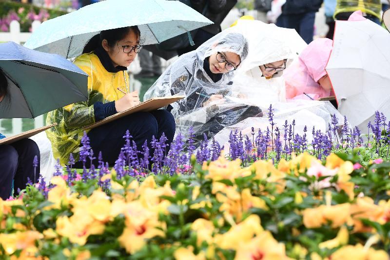 每年一度的賞花盛事香港花卉展覽今日(三月十五日)在維多利亞公園開幕,展出約四十二萬株花卉。今日舉行的學童繪畫比賽吸引約二千一百名學生參與。