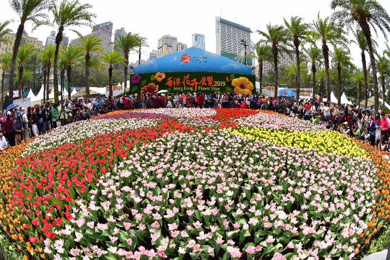 香港花卉展覽星期日(三月二十四日)結束。多個繽紛悅目的園林造景成為遊人的拍照熱點,包括以色彩絢麗的鬱金香鋪設而成的花海。