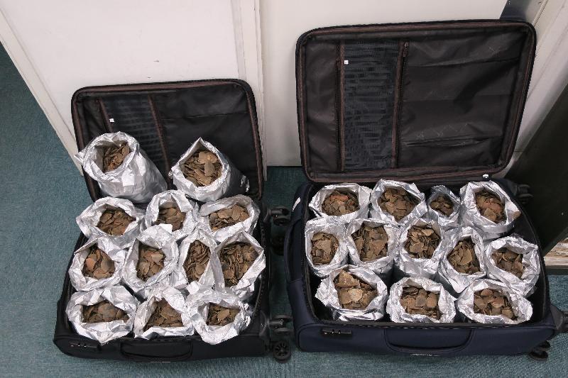 一 名 旅 客 因 走 私 穿 山 甲 鱗 片 , 違 反 《 保 護 瀕 危 動 植 物 物 種 條 例 》 罪 名 成 立 , 今 日 ( 五 月 六 日 ) 被 判 處 監 禁 。 圖 示 海 關 人 員 在 其 行 李 發 現 的 穿 山 甲 鱗 片 。