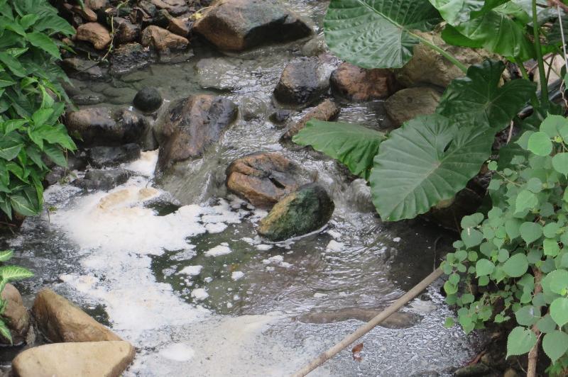 元朗八鄉上村的豆品工場排出含有豆腐殘渣的廢水,嚴重污染附近一帶水體而被環保署檢控。