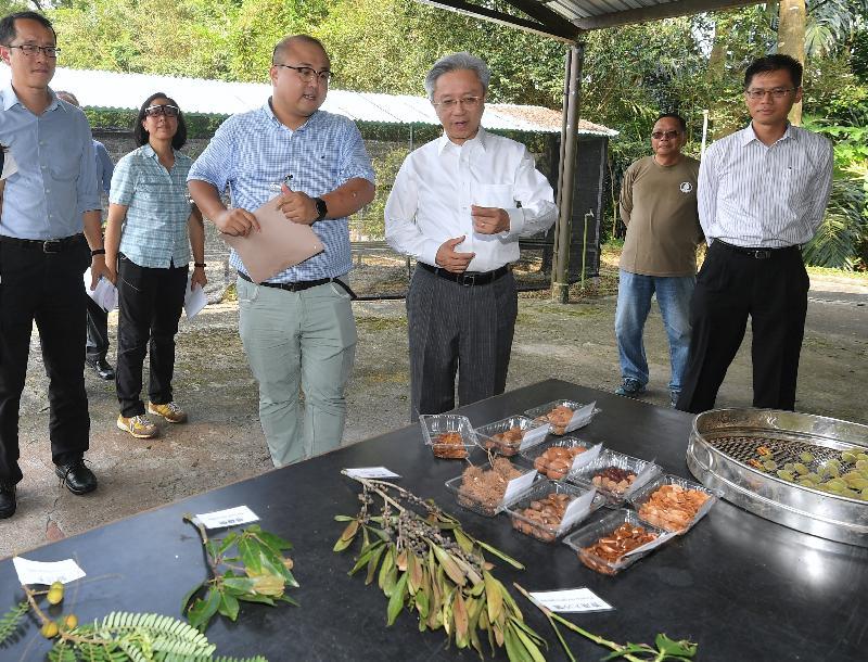 公務員事務局局長羅智光今日(八月十四日)到訪漁農自然護理署元朗大棠苗圃。圖示羅智光(右三)聽取同事講解他們為郊野公園培育樹苗的過程。