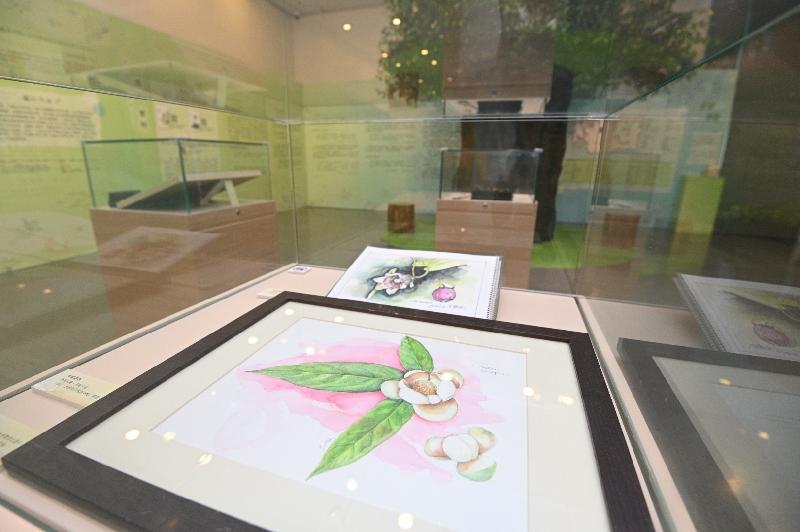 由康樂及文化事務署香港公共圖書館主辦的「第十三屆香港文學節」今日(六月二十三日)於香港中央圖書館展開,揭幕活動為「字旅.時光」專題展覽。圖示「賞.自然」展區,介紹「自然書寫」作品,細看不同時期山水景物在作家筆下的個性。