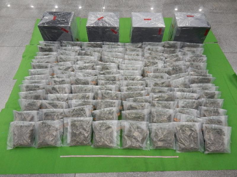 香港海關檢獲約一千七百萬元懷疑大麻花(附圖)