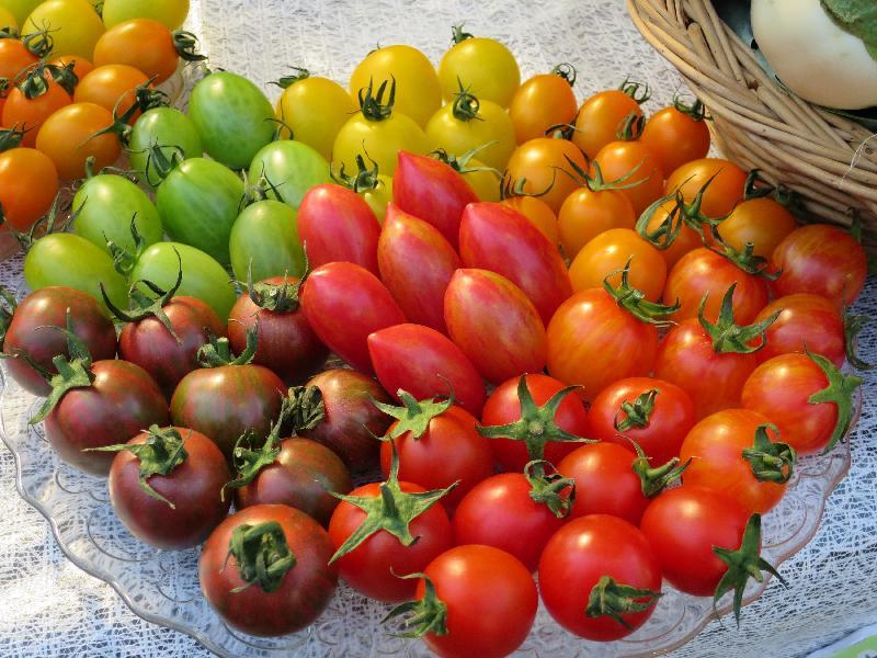 2021本地漁農美食嘉年華由今日(一月八日)至二月七日,連續一個月於網上舉行,並展銷多種本地漁農產品和美食。圖示於網上嘉年華售賣的多款本地小果番茄(俗稱車厘茄)。