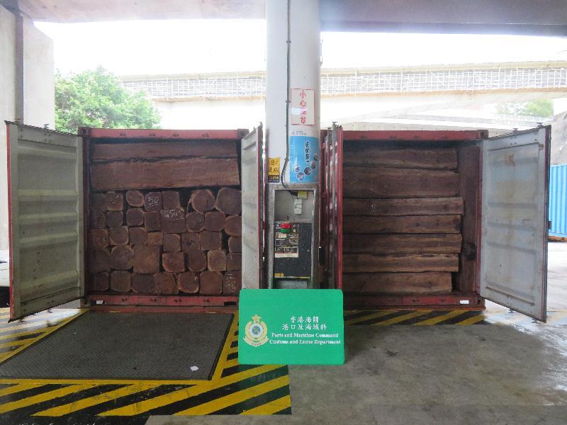 香港海關檢獲過去五年最大批懷疑受管制木材
