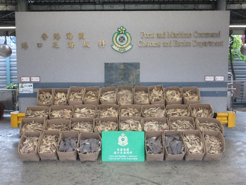 香港海關檢獲逾兩公噸懷疑受管制藍吻犁頭鰩屬乾魚翅及乾魚翅