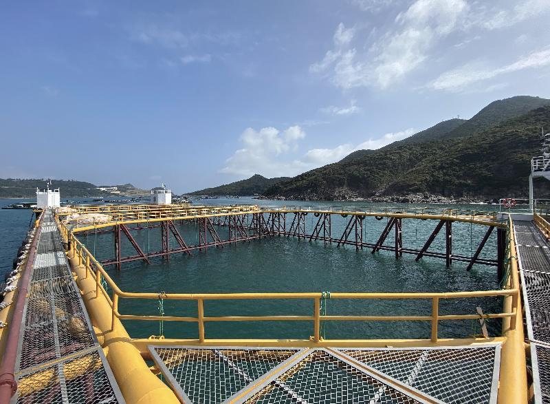 為引領香港海產養殖業邁向現代化及可持續發展,漁農自然護理署今年在東龍洲魚類養殖區設立現代化海產養殖示範場。圖示該示範場以鋼質全焊接的主體結構,其由鋼質桁架結構連接數個具浮力的鋼質箱體組成。
