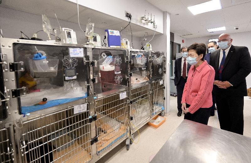 行政長官林鄭月娥今日(八月三日)參觀香港城市大學(城大)位於深水埗的城大動物醫療中心。圖示林鄭月娥(左二)在城大校董會主席黃嘉純(右二)和校長郭位教授(左一)陪同下,聽取城大動物醫療中心執行董事Duncan Hockley獸醫(右一)介紹狗隻病房的設備。