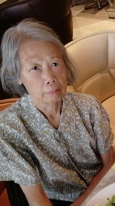 八十四歲女子劉漢蘭身高約一點五米,體重約三十五公斤,瘦身材,長面型,黃皮膚及蓄短灰白髮。她最後露面時身穿灰色短袖上衣、黑色長褲及黑色鞋。